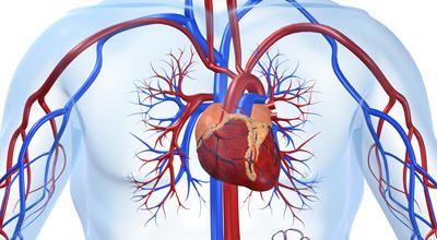 risarcimento chirurgia vascolare errata